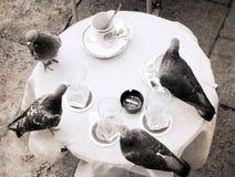 在减速火箭的样式的艺术品,四只鸽子在桌上 免版税库存图片