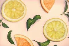 在减速火箭的桃红色背景的柑橘样式 免版税库存照片