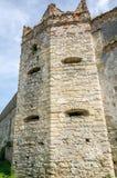 在凝视Selo的Staroselskiy城堡在利沃夫州 免版税图库摄影