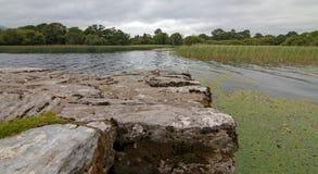 在凯利圆环的港湾Leane -湖Leane -基拉尼爱尔兰怒火的 库存图片