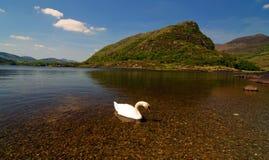 在凯利,爱尔兰环形的风景横向  免版税库存照片