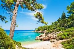 在凯梅尔,土耳其附近的美丽的狂放的海滩 库存照片