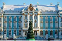 在凯瑟琳宫殿的主楼的背景的圣诞树 冬天在Tsarskoye Selo 桥梁okhtinsky彼得斯堡俄国圣徒 免版税库存图片