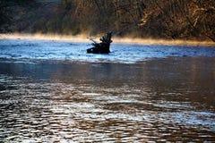 在凶恶河的早晨薄雾在11月下旬 库存图片