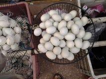 在出售鸡蛋的新的板材 图库摄影