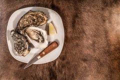 在刀子和柠檬陪同的一块白色板材的牡蛎 免版税库存照片