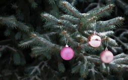 在分支圣诞树的圣诞节球 免版税库存图片