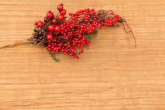 在分支圣诞节的红色果子装饰的 免版税图库摄影