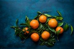 在分支在深蓝背景的构成安排的绿色叶子的充满活力的橙色蜜桔 圣诞节新年度 免版税库存图片