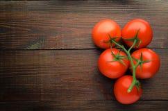 在分支木背景的成熟新鲜的西红柿 免版税图库摄影