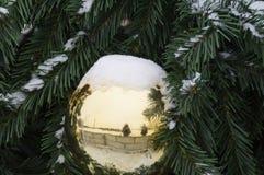 在分支用雪盖的圣诞树的金黄圣诞节球 库存照片