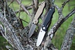 在分支的两把折叠的刀子 库存照片