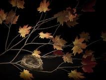 在分支的巢与秋叶 库存照片