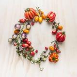 在分支的新鲜的五颜六色的蕃茄与叶子,在木背景的被排行的圈子,顶视图 库存照片