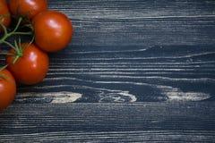 在分支的新鲜的蕃茄 免版税库存照片