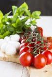 在分支的西红柿和蕃茄在切片,乳酪切开了 库存图片
