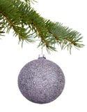在分支的银色圣诞节玩具 库存照片