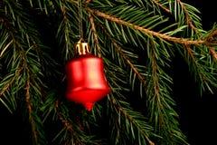 在分支的集合红色圣诞节装饰,在黑背景 免版税图库摄影