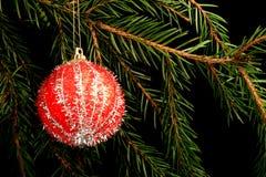 在分支的集合红色圣诞节装饰,在黑背景 图库摄影
