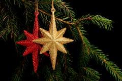 在分支的集合红色圣诞节装饰,在黑背景 免版税库存图片