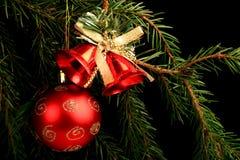 在分支的集合红色圣诞节装饰,在黑背景 库存照片