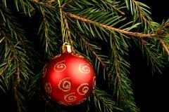 在分支的集合红色圣诞节装饰,在黑背景 库存图片