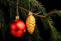 在分支的集合红色圣诞节装饰,隔绝在黑背景 免版税图库摄影