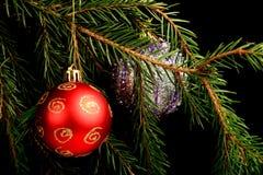 在分支的集合红色圣诞节装饰,隔绝在黑背景 库存图片