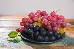 在分类的大有机食用葡萄地球在锡服务 免版税图库摄影