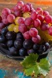 在分类的大有机食用葡萄地球在锡服务 免版税库存照片