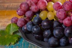 在分类的大有机食用葡萄地球在锡服务 免版税库存图片