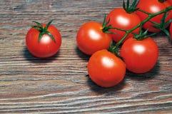 在分行的红色蕃茄 免版税图库摄影