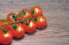 在分行的红色蕃茄 免版税库存图片