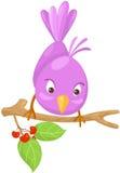 在分行的逗人喜爱的鸟 免版税库存照片