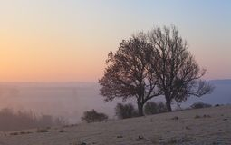 在切削Campden,科茨沃尔德,格洛斯特郡,英国的有薄雾的日出 库存照片