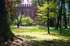 在切尔诺夫策国民大学附近的庭院 免版税库存照片