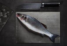 在切板的未加工的鲈鱼 免版税库存照片