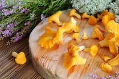 在切板的黄蘑菇蘑菇 免版税图库摄影