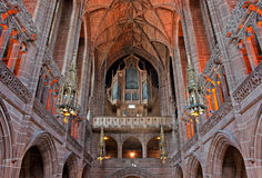 在利物浦夫人里面的大教堂教堂 库存照片