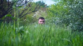 在前景有绿色水多的草,在一个人看在草外面的背景中 影视素材
