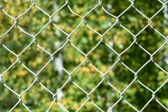 在前景格栅滤网网 在背景中树叶子的一个模糊的图象  免版税库存照片