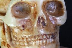 在前景的古老人的头骨 图库摄影