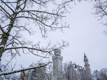 在前景的树枝与新天鹅堡防御冬天季节雪 免版税库存图片