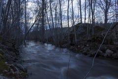 在前景,春天堆的湿石头一条通常小河在一个森林里在北瑞典 库存图片