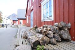 在前沿的木柴 免版税库存照片