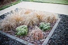 在前院装饰草的冬天霜 免版税库存图片