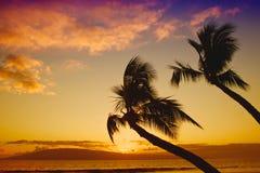 热带日落 免版税库存图片