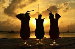 热带饮料剪影 库存照片