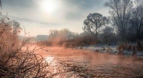 在劈裂的冷淡的有薄雾的早晨 库存图片