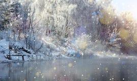 在劈裂的冷淡的有薄雾的早晨 免版税库存图片